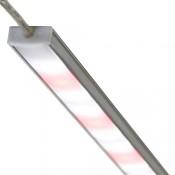 Lightbars (4)