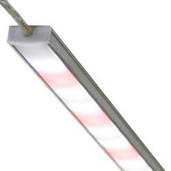Lightbars